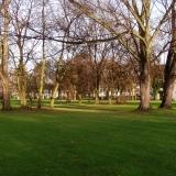 Blick in die offen gestaltete Grünfläche der amerikanischen Siedlung in Bonn